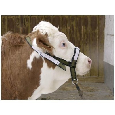 Ohlavka pre kravu  12501