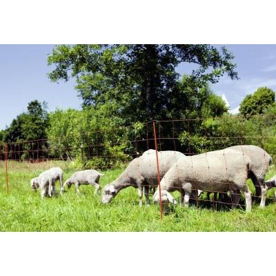 Sieť pre ovce 108cm dvoma...
